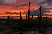 Sunset in The Superstitions, Arizona