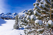 Sierra crest from Long Lake in winter, John Muir Wilderness, Sierra Nevada Mountains, California  USA