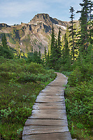 Boardwalk section of Bagley Loop Trail, Table Mountain is in the distance. Heather Meadows Recreation Area, Mount Baker Snoqulane National Forest. North Cascades Washington