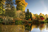 A view of the lake in autumn in the Savill Gardens;  Surrey, UK