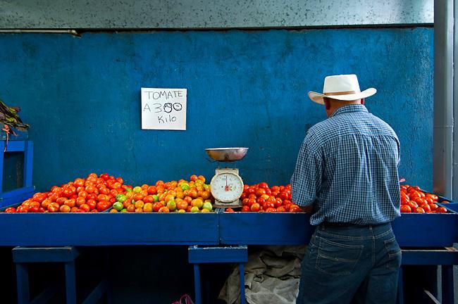 Costa Rica / Cartago / Mercado Muncipal de Cartago / Fruit and Vegetable Market / Tomatoes