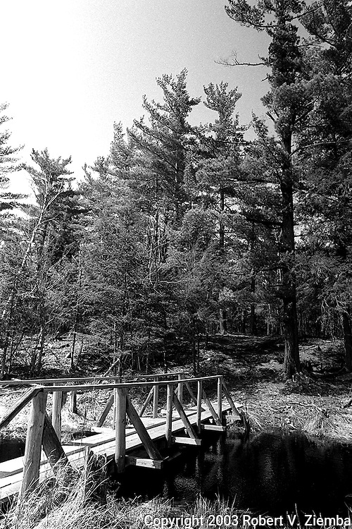 """""""The Gulf Trail""""-A black and white image of a foot bridge crossing a stream on the trail to the Gulf Unique Area."""