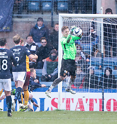 Motherwell's keeper Dan Twardzik drops the ball for Dundee's Gary Irvine (2) to score their second.<br /> Dundee 4 v 1 Motherwell, SPFL Premiership played 10/1/2015 at Dundee's home ground Dens Park.