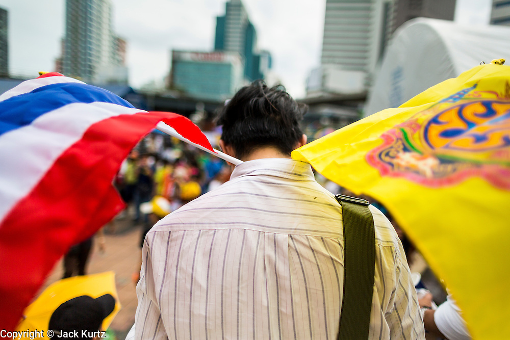 04 AUGUST 2013 - BANGKOK, THAILAND:  An anti-government protestor carries the Thai and Royal flags during an anti-government rally Sunday. About 2,000 people, members of the  People's Army against Thaksin Regime, a new anti-government group, protested in Lumpini Park in central Bangkok. The protest was peaceful but more militant protests are expected later in the week when the Parliament is expected to debate an amnesty bill which could allow Thaksin Shinawatra, the exiled former Prime Minister, to return to Thailand.     PHOTO BY JACK KURTZ