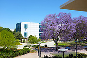 The Pollak Library Seen From the Titan Shops on Campus at California State University Fullerton