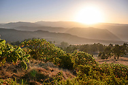 Landschaft im Simien Nationalpark, Debark, Region Amhara, Äthiopien<br /> <br /> Landscape in Simien National Park, Debark, Amhara Region, Ethiopia
