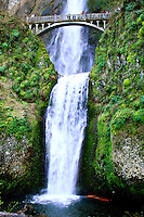 Famous Multnomah Falls with its iconic bridge spanning the lower falls
