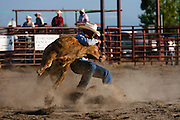 Three Forks Rodeo, Montana..