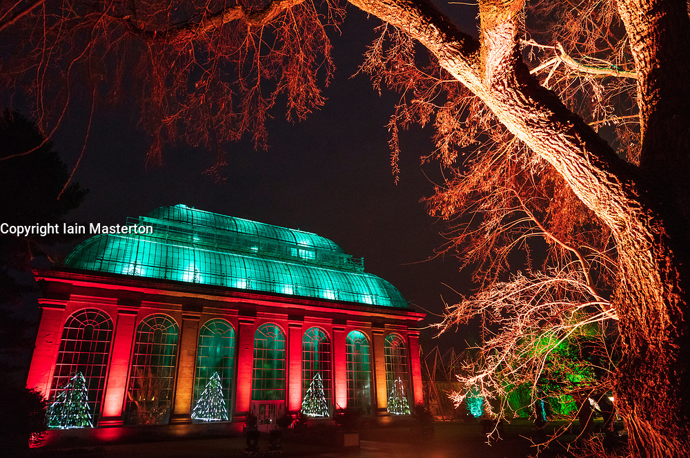 Edinburgh, Scotland, UK. 23 November, 2018. Christmas at the Botanics opens at the Royal Botanic Garden Edinburgh. The annual night event features an illuminated trail through the gardens with over a million lights. Pictured, The Glasshouse Show. The Palm House features a stunning can colourful light show in time to music designed by Kate Bonney of Lightworks.