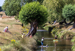 © Licensed to London News Pictures. 17/07/2020. London, UK. Members of the public cool off in the Beverley Brook in Richmond Park as weather forecasters predict a warm 28c for the end to the week but with rain on Sunday. As Prime Minister Boris Johnson calls for Britons to return to working in offices to help local service industries and the economic recovery. Photo credit: Alex Lentati/LNP