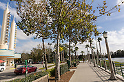 Walkway along Spring Lake in the Disney created master planned community of Celebration, Florida.