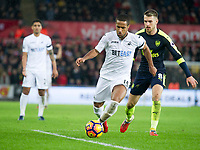 Football - 2016 / 2017 Premier League - Swansea City vs. Arsenal<br /> <br /> Wayne Routledge of Swansea attacks , at the Liberty Stadium.<br /> <br /> COLORSPORT/WINSTON BYNORTH
