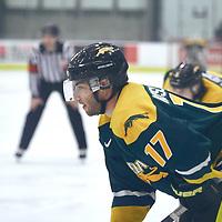 5th year forward, Corey Kosloski (17) of the Regina Cougars during the Men's Hockey Home Game on Sat Jan 19 at Co-operators Center. Credit: Arthur Ward/Arthur Images