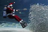 Santa Claus in Aquarium