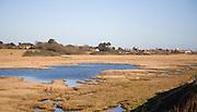 Freshwater marshes behind shingle bay bar at Walberswick, Suffolk, England