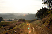 countryside dirt road in early morning, France Languedoc