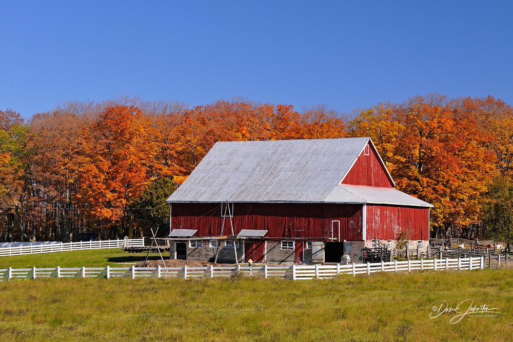 Gordon's Farm buildings and fence, Manitoulin Is. Tehkummah, Ontario, Canada
