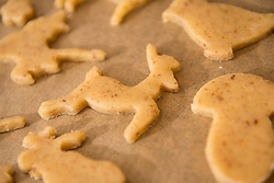 Close-up of cut out dough reindeer shaped cookies during preparing cookies, Munich, Bavaria, Germany