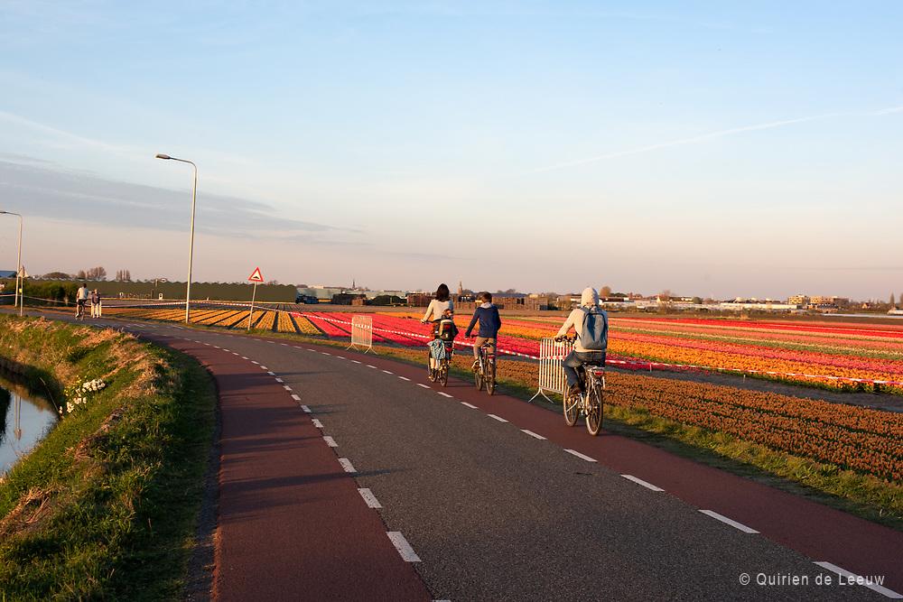 Bollenstreek Noordwijkerhout Noord Holland