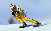 Alpint, 29.11.2001 Lake Louis, Kanada,<br />Die Kanadierin Anne Marie Lefrancois am Donnerstag (29.11.2001) beim der Ski Alpin Weltcup Abfahrt der Damen in Lake Louis, Kanada.<br />Foto: Digitalsport