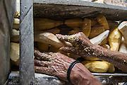 Processing Yucca (Cassava)<br /> Wai Wai territory, region 9<br /> Gunns<br /> Konashen<br /> GUYANA<br /> South America