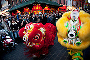 Two Chinese Dragons perform a dance for Chinese New Year on Gerrard Street, Soho, London. Also known as Chinatown. Local Chinese community gather on this famous area of central London which is the focus of celebrations for this, the Chinese Year of the Dragon, so a most auspicious year ahead. Bright red and yellow lanterns are strung across between the buildings creating a canopy of colour.