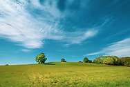 Farmng landscape in West Sussex England with blue sky in summer
