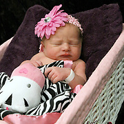 Lillee hours old at the hospital.