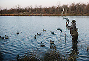 A duck hunter setting up decoys on a private watershed lake in Shamrock, Oklahoma