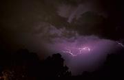 Fork Lightening, dark night sky, purple,