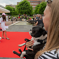 Dogs and owners participate the Dogs on the Red Carpet fashion show organised by pet friendly shopping centre Allee in Budapest, Hungary on June 12, 2021. ATTILA VOLGYI