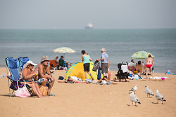 @Licensed to London News Pictures 13/09/16. Joss Bay, Thanet, Kent. Local residents enjoying very unusual high temperatures today on Joss Bay main beach in Kent. Temperatures could soar to record levels for the hottest September day in 50 years.Photo credit: Manu Palomeque/LNP