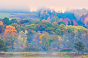 Acadian forest in autumn foliage. Rolling hills. <br />Mactaquac<br />New Brunswick<br />Canada