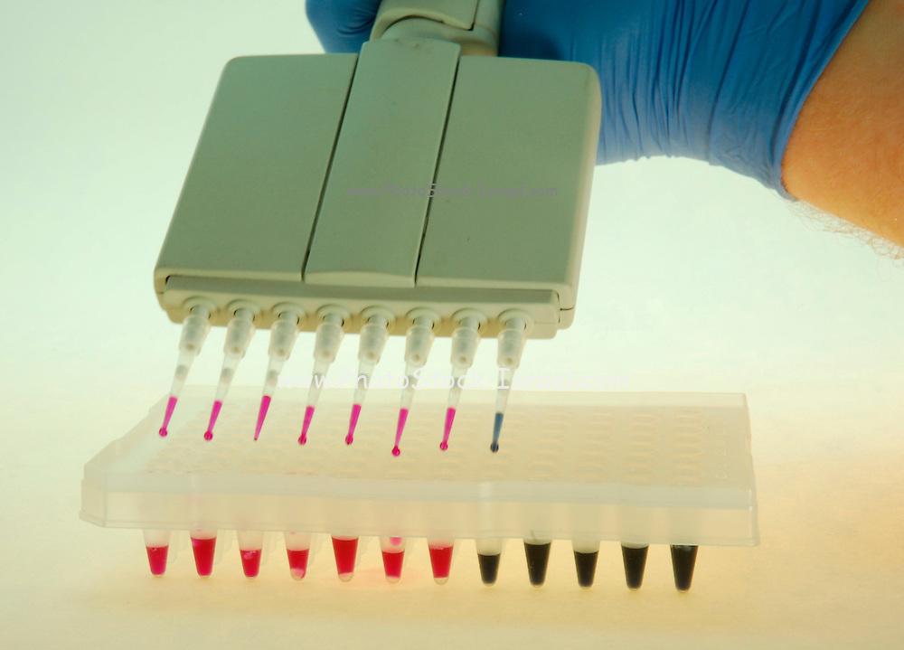 Adding substance and chemicals to test tubes with a pipette;