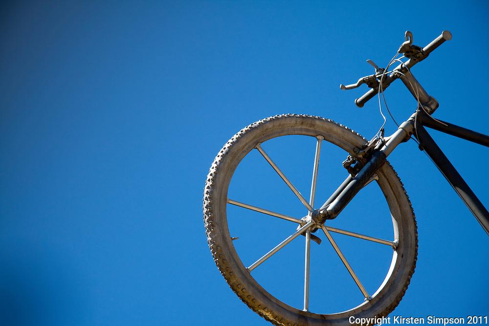 Mountian Biking at Whistler