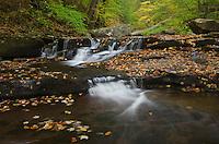 Cascades of Kitchen Creek in Glen Leigh, Ricketts Glen State Park, Pennsylvania