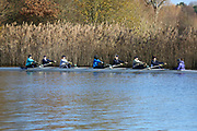 Crew: 80   W J16 8+   Henley Rowing Club   HEN-BROWN<br /> <br /> Wallingford Head 2017<br /> <br /> To purchase this photo, or to see pricing information for Prints and Downloads, click the blue 'Add to Cart' button at the top-right of the page.