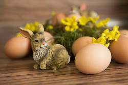 Close-up of an Easter bunny with Easter eggs, Munich, Bavaria, Germany