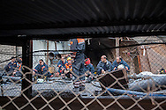 Rescue teams continue to look for survivers and retrive bodies whilst family and friends wait patiently. Hundreds of miners remain trapped after an explosion caused the death of at least 238 Turkish miners were killed in the disaster in Soma mine, western Turkey.