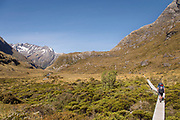 Rear view of hiker walking along a boardwalk surrounded by plants and mountains, Routeburn Track, Fiordland National Park, South Island, New Zealand