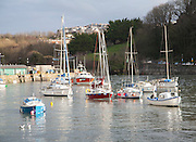 View of boats in the harbour in sunshine of winter afternoon, Ilfracombe, north Devon, England