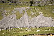 Scree slopes of loose weathered rock, Gordale Scar carboniferous limestone gorge, Yorkshire Dales national park, England, UK