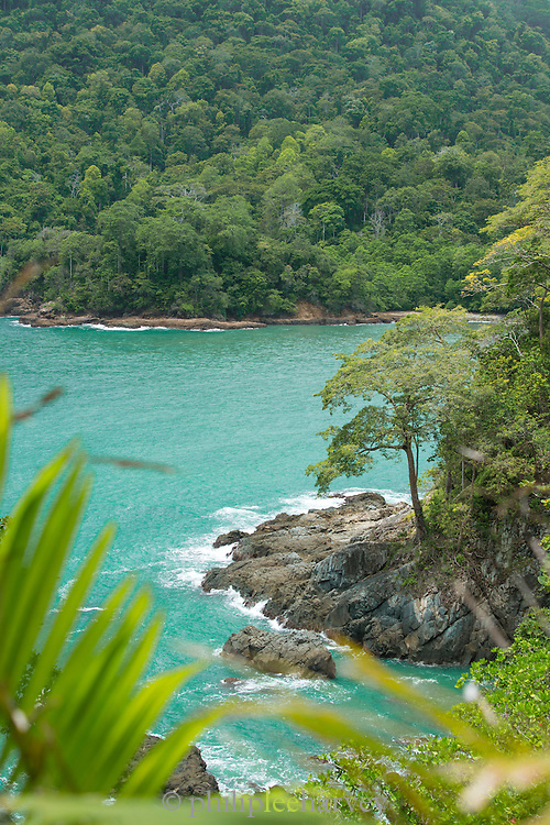 Overview from cliff top to the sea Meru Betiri National Park, East Java, Indonesia, Southeast Asia