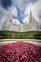 The gorgeous San Diego LDS Temple on a warm Summer day in sunny Southern California as it sits among the beautifully landscaped flower gardens.