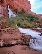 Vasey's Paradise, Colorado River mile 32, Grand Canyon National Park, Arizona, USA; 3 May 2008; Pentax 67II, 75mm perspective control lens, Velvia 100