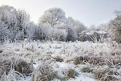 Wintry field in Gloucestershire