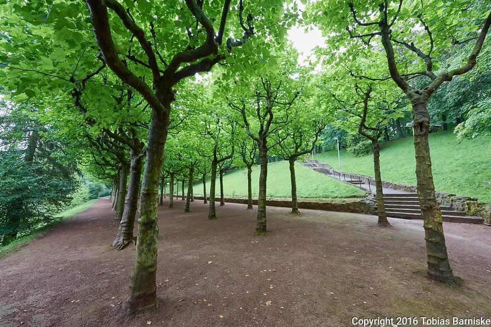 City park at the Gaalgebierg (gallows mountain) in Esch-sur-Alzette.