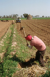Man digging field in Punjab; India,