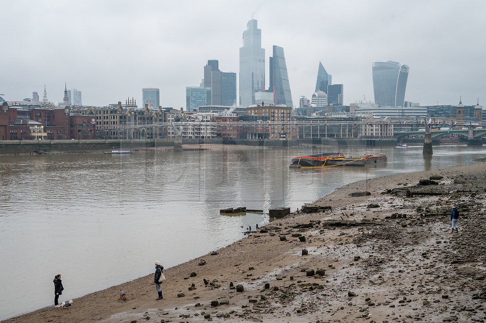 © Licensed to London News Pictures. 01/02/2021. London, UK. People walk their dogs at low tide on the River Thames near the Millennium Bridge. London is currently in Tier-4 advising people to stay at home. Today marked the 1st anniversary of first UK Covid-19 person. Since then, over, 100,000 people have died in the UK with the Covid-19 disease. Photo credit: Ray Tang/LNP