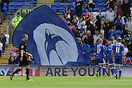 Cardiff City's Anthony Pilkington (right centre ) celebrates after scoring his teams 1st goal to equalise with his teammates Lex Immers (l) and Craig Noone (r). Skybet football league championship match, Cardiff city v Birmingham city at the Cardiff city stadium in Cardiff, South Wales on Saturday 7th May 2016.<br /> pic by Carl Robertson, Andrew Orchard sports photography.